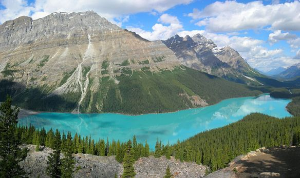 Creative Commons. Source. http://en.wikipedia.org/wiki/File:Peyto_Lake-Banff_NP-Canada.jpg