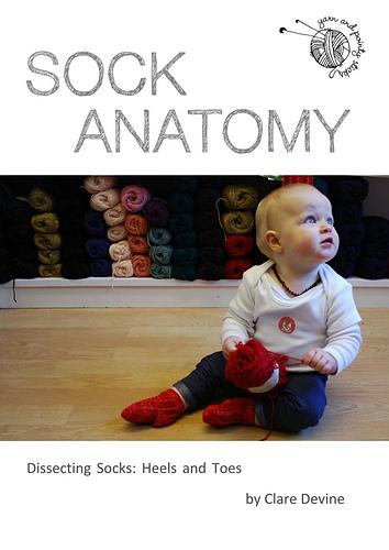 Sock_Anatomy_cover_shot_medium